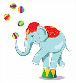 Illustration of circus elephant as acrobat. Isolated on white. poster