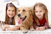 Little sisters lying on floor with dog, having fun under blanket, smiling. poster