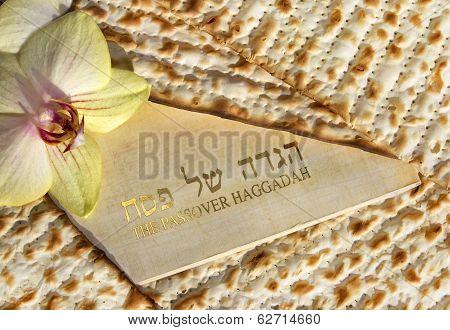 Haggadah Of Passover