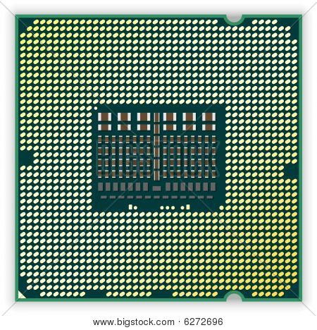 Processor bottom