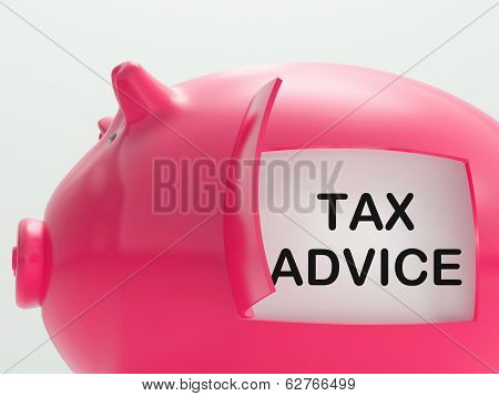 Tax Advice Piggy Bank Shows Advising About Taxes