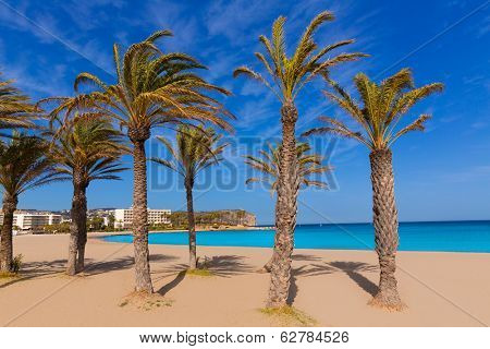 Javea playa del Arenal beach in Mediterranean Alicante at Xabia Spain palm trees