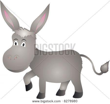 Donkey walking