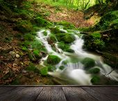 forest waterfall and rocks covered with moss and wood pier poster
