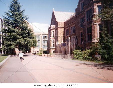 Washington-Universitaet