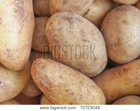 Potato Vegetable