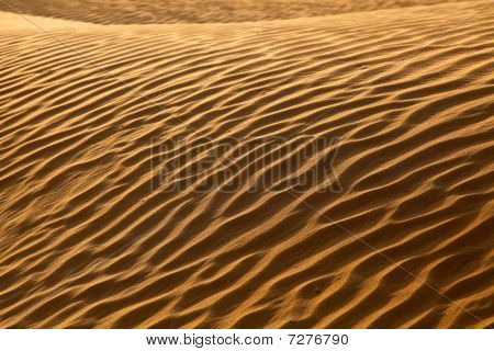Rippled Sand Waves In The Desert