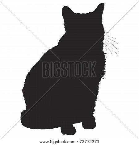 Cat Silhouette 1