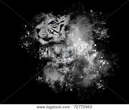White Bengal Tiger With Art Paint On Black
