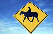 Horseback Riding road sign against blue sky. poster