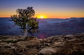 beautiful colorful landscape sunset in grand canyon national park arizona poster
