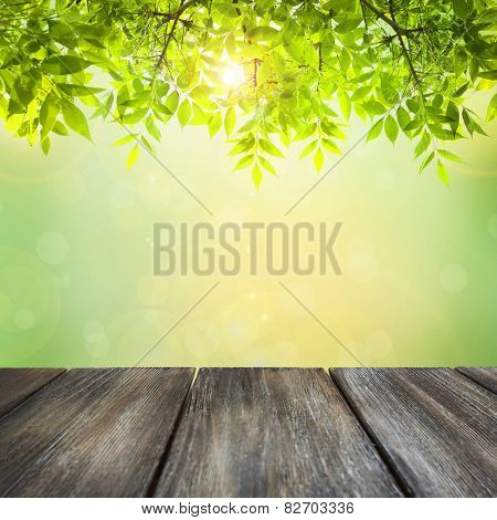 Wooden board on green natural background