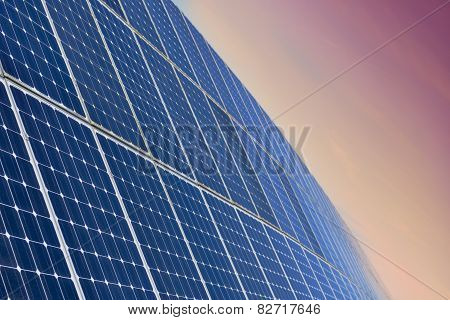 Solar Panel Field By Sunrise