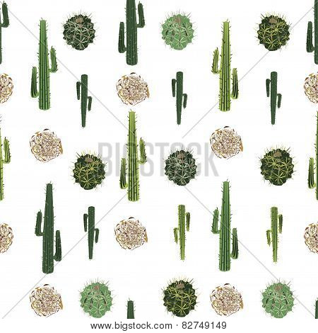 Cacti And Tumbleweed Seamless Pattern