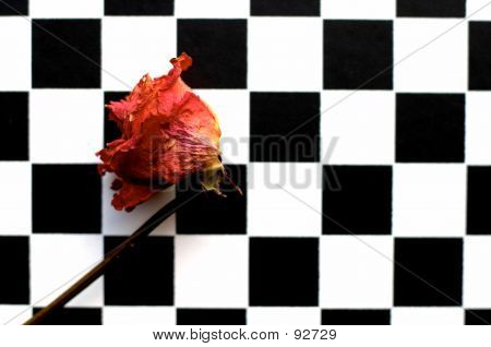 Rose And Chessboard 2