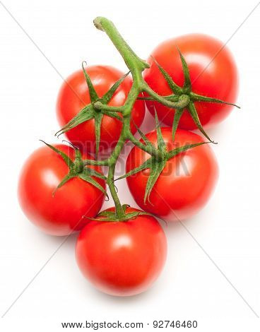 Juicy Tomatoes On White