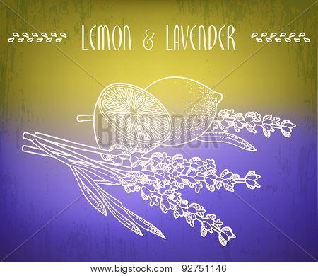 Lemon And Lavender Flowers