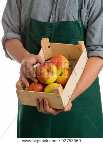 Farmer Holding Crate With Fresh Harvested Apples