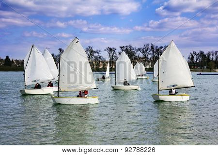 Lots Of Boats Sailing