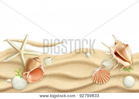 Seashells on sand, vector background