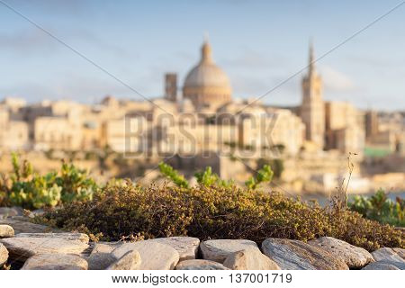 View from Tigne Point across the harbour to Valletta with moss and rocks in foreground