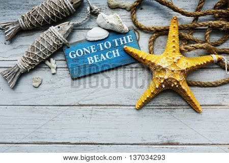 Adventure Ocean Sea Starfish Concept