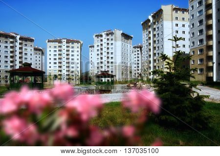 residential buildings in a row