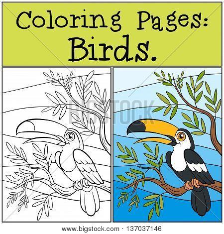 Coloring Pages: Birds. Little Cute Toucan.