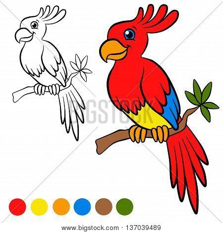 Coloring Page. Color Me: Parront. Little Cute Parrot Sits On The