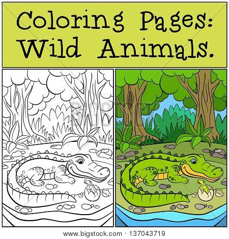 Coloring Pages: Wild Animals. Mother Alligator Looks At Her Little Cute Baby Alligator.