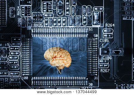 artificial intelligence, human brain and communication, focal point on brain and microchip.