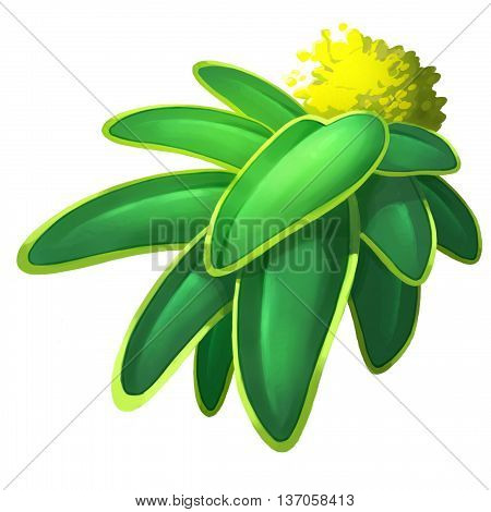 Green Leaves Yellow Flower Plant. Video Game Assets, Objects; Story Card Illustration Pieces isolated on White Background
