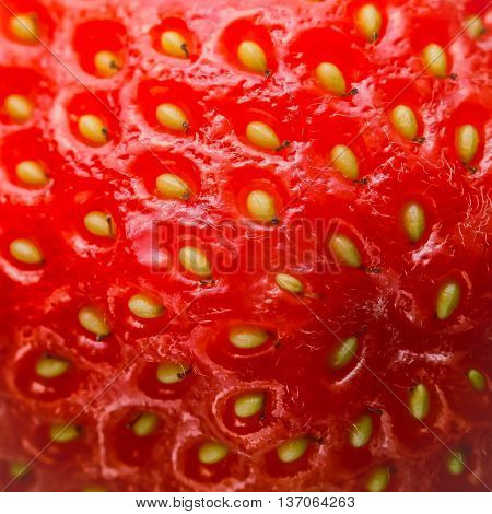 Extreme macro of frash juicy strawberry texture.