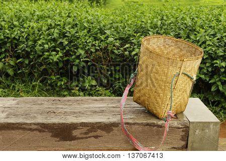 Basket of a tea pickering behind a green tea plantation