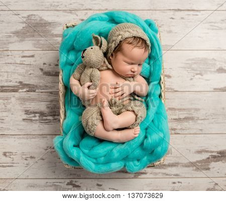 cute baby with knitted hat and toy in little cot, top view
