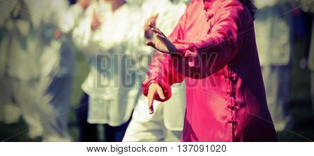 Tai Chi Martial Art Woman With Pink Silk Dress Perform The Exerc