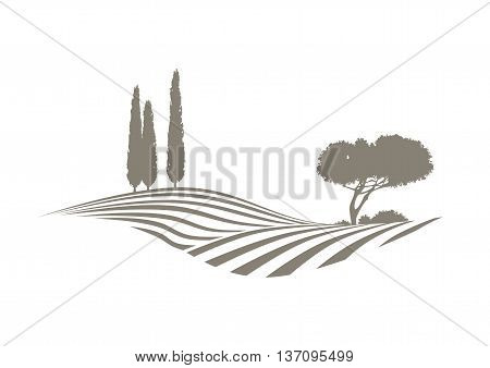 rural mediterranean vector landscape with plowed fields cypresses and pine tree