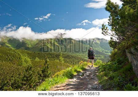 Young woman watching beautiful view of Tatras. Tatras National Park. Vysoke tatry. Slovakia. Nature of Slovakia. Mountains. Forest. Woman hiking. Trekking in Tatras.