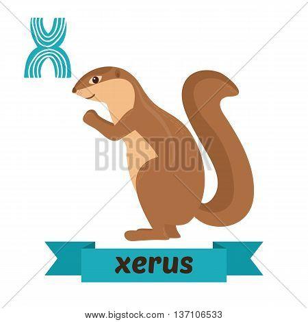 Xerus. X Letter. Cute Children Animal Alphabet In Vector. Funny Cartoon Animals