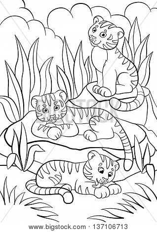 Coloring Pages. Wild Animals. Three Little Cute Baby Tigers.