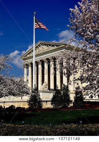 Washington DC - April 9 2014: Cherry trees flank the majestic west front of the neo-classical 1935 United States Supreme Court