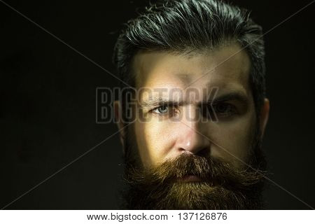 young handsome bearded man with long beard moustache and brunette hair in studio on grey background copy space