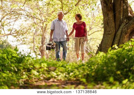 Old couple elderly man and woman in park. Active retired seniors holding hands and walking in park with a picnic basket