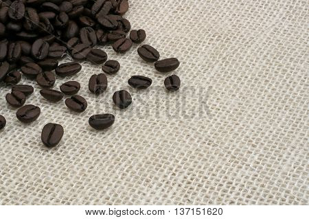 black coffee beans on a bright fabric
