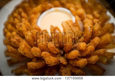 Closeup spicy breaded blooming onion with creamy cheesy dip