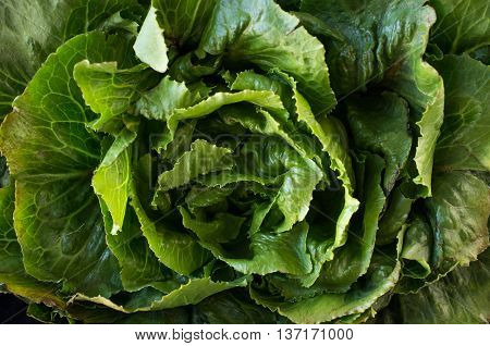 Bunch of collard green leaves in farmers market close up image
