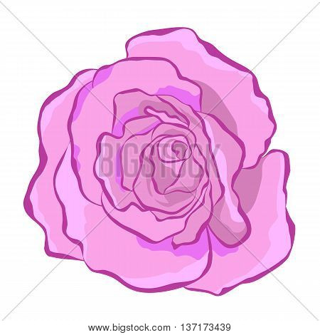 Lush beautiful purple rose. Vector illustration for print website cards textiles