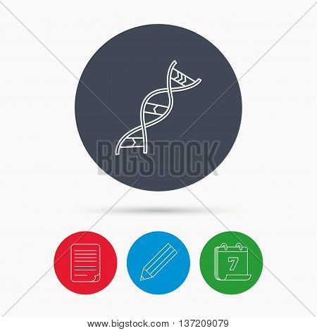 DNA icon. Genetic evolution structure sign. Biology science symbol. Calendar, pencil or edit and document file signs. Vector