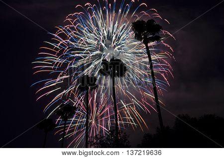 4th of July Firework in Burbank, California
