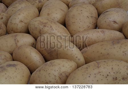 over a dozen potatoes lying next to each other